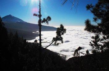 Kanárské ostrovy - Tenerife